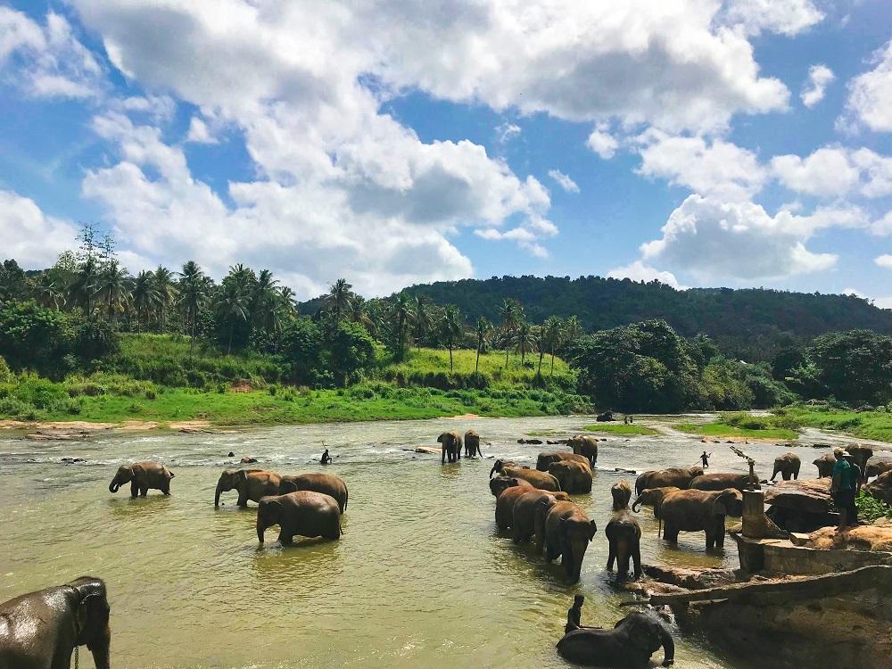 Op reis naar Sri Lanka; vergeet niet een visum aan te vragen